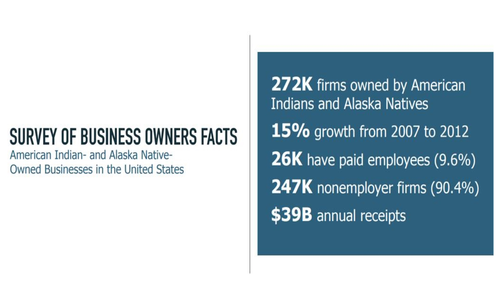 American Indian And Alaska Native Owned Businesses In The