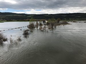 NE Oregon flooding