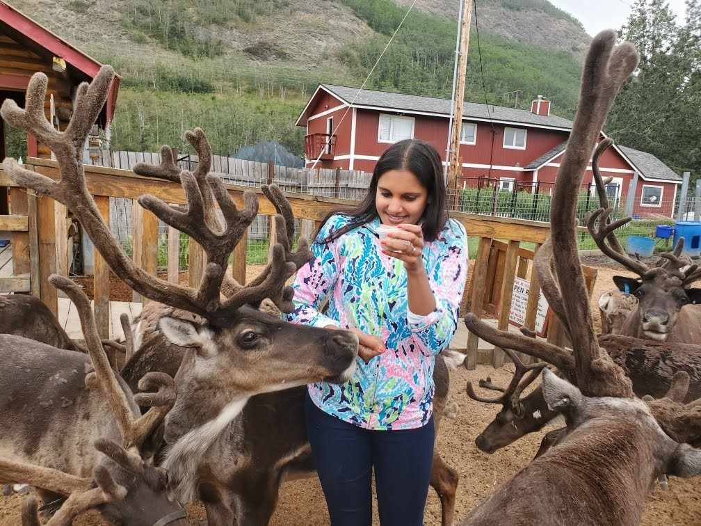 Site Visit Reindeer Farm In Palmer Alaska Faces Unusual Business Obstacles Sba S Office Of Advocacy
